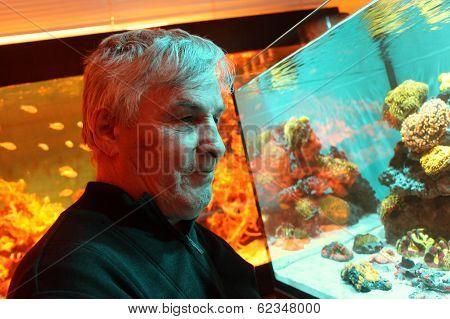Man Looking At Fishes