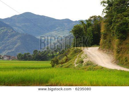 the road around fewa lake,nepal