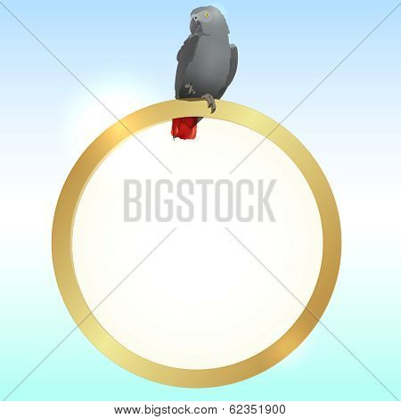 Parrot and golden frame