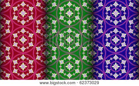 Colorful Gazania Pattern