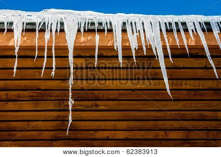 Icicles And Roof