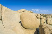 Scenic Rocks In Joshua Tree National Park