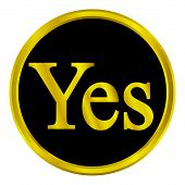 Gold Yes Button
