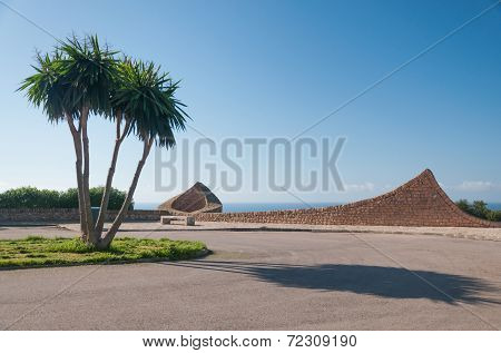 Sa Torre Palms