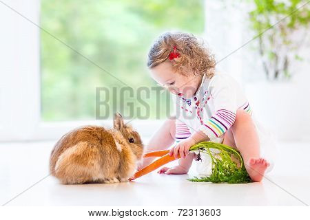 Adorable Toddler Girl playing with a real bunny in a sunny living room