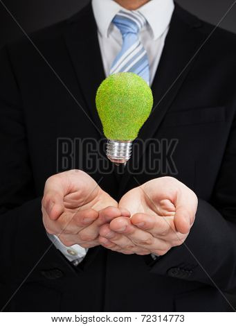 Businessman With Green Bulb
