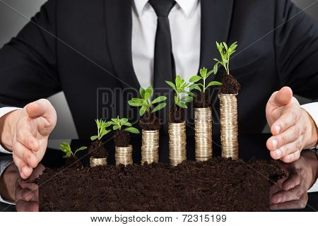 Businessman's Hands Protecting Coins In Saplings