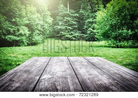 Wooden Picnic Table In Forest