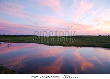 Colorful Evening At A Green Marshland