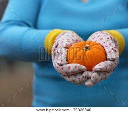 Woman Wearing Gloves Holding Orange Pumpkin