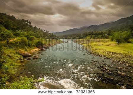 Mountain jungle river
