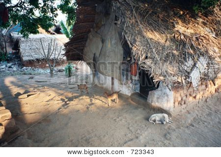 Slum Hut In India
