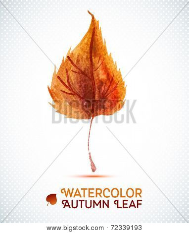 Watercolor autumn leaf.Vector illustration of watercolor hand drawn plant.