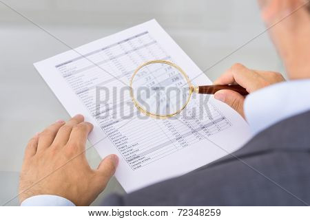 Auditor Inspecting Document
