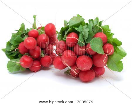 Two Bunch Of Radishes
