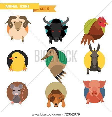 Farm animals avatars