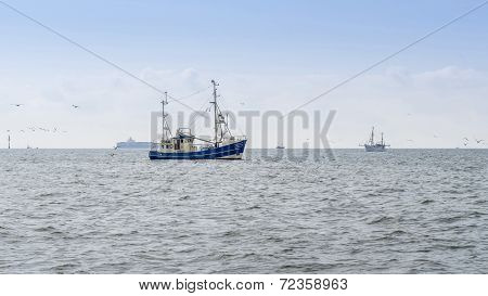 Fishing Boats Trawling
