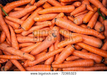 Basket Of Dirty Unwashed Carrots