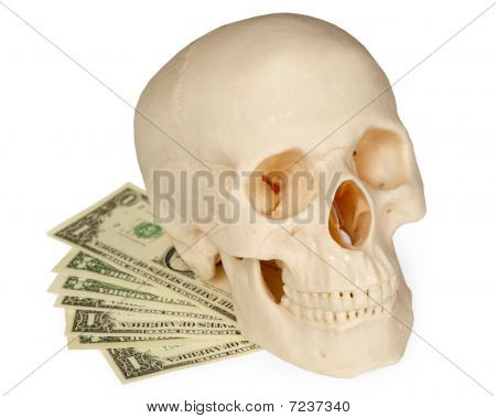 Skull Lying On A Pack Of Money Isolated On White