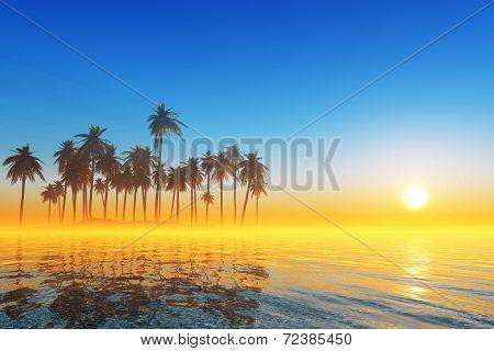 Coconut Tropical Island
