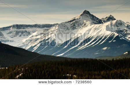 Mountain Views In Winter