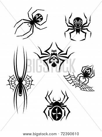 Black danger spiders set