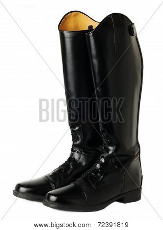 Horse Riding  Dressage Boots Isolated On White