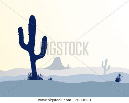 Cactus desert sunset