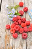 pic of eat me  - fresh raspberries with floral forget - JPG