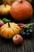 picture of fall decorations  - Autumn table setting with pumpkins - JPG