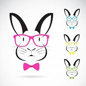 stock photo of cony  - Vector image of a rabbits wear glasses on white background - JPG