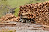 foto of logging truck  - A log truck delivers a load of logs to the log yard at a lumber processing mill that specializes in small logs - JPG