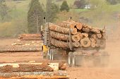 stock photo of logging truck  - A log truck delivers a load of logs to the log yard at a lumber processing mill that specializes in small logs - JPG