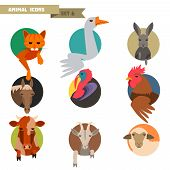stock photo of animal husbandry  - Farm animal avatars set with flat design - JPG