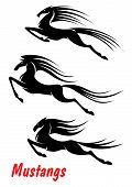picture of mustang  - Black elegant wild horse mustangs and stallions in rush for equestrian sport - JPG