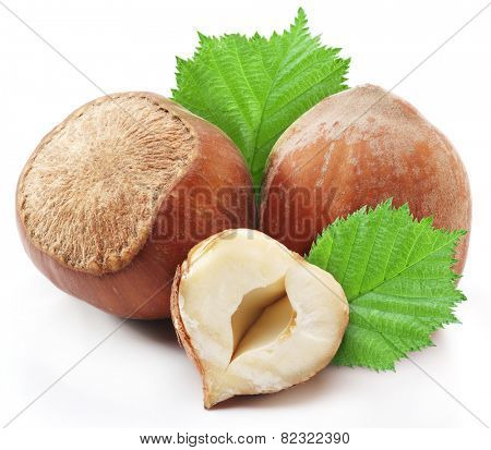 Hazelnuts with leaves isolated on a white background.