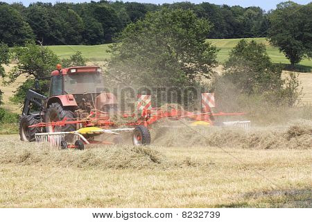 Raking Hay in Agriculture