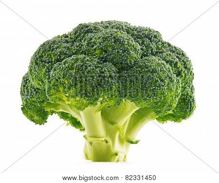 Fresh Organic Broccoli Isolated On White