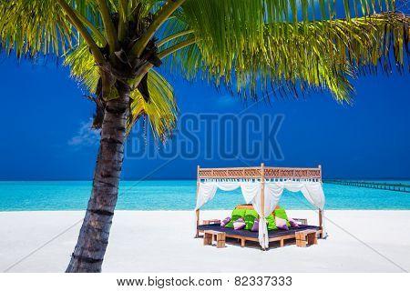 tropical wedding ceremony location. beautiful blue sky and palm tree