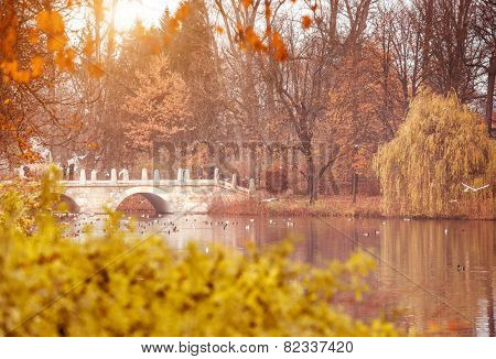 The Lazienki Park (Royal Baths) Park in Warsaw, Poland in the autumn day.