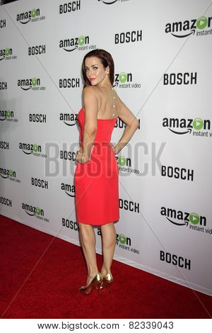 LOS ANGELES - FEB 3:  Annie Wersching at the