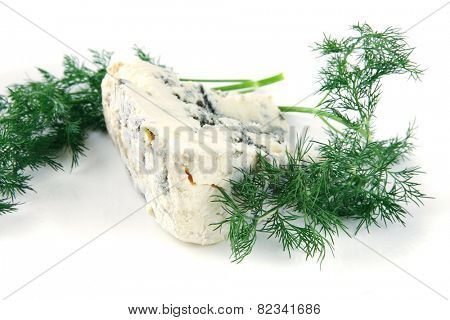 soft moldy roquefort cheese on white cheese