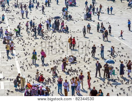 People Feeding The Pigeons In Venice, Italy