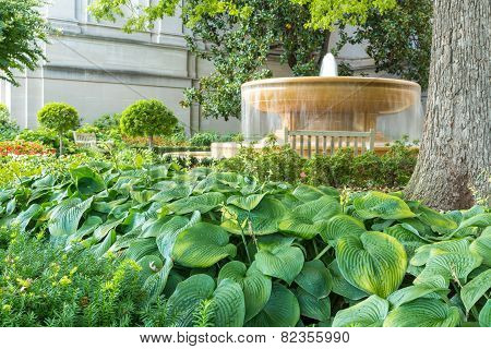 Water Fountain In The Garden