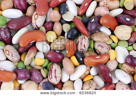 Mixed Beans up Close