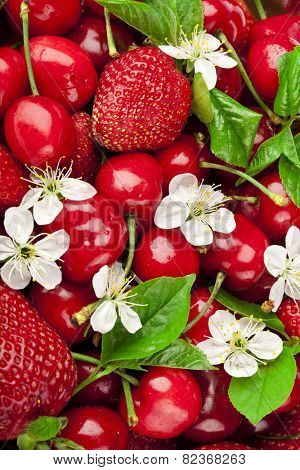 Sweet strawberry and cherries with flowers surface top view background