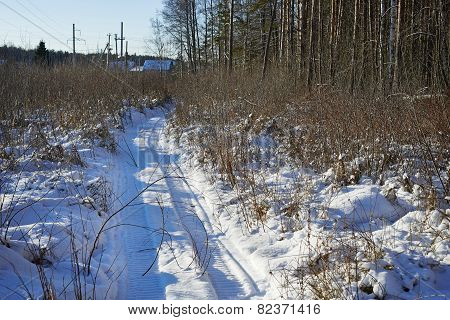Path With Traces Of A Snowmobile At Forest Edge