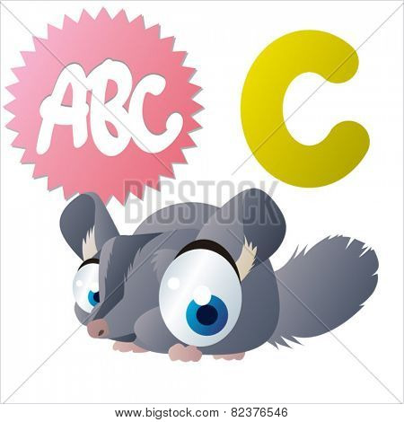 vector isolated cute happy big eyes abc animals: C is for Chinchilla