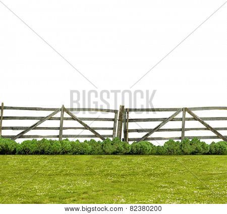 Old fence and green grass isolated on white