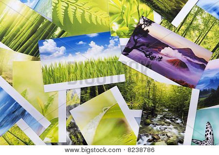 Stack Of Nature Photo